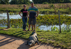 Brasil, Pantanal