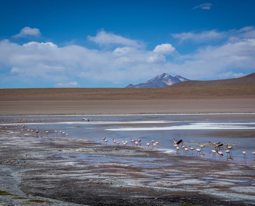 Bolivia, 3 day tour 'Region Lipez' (18)