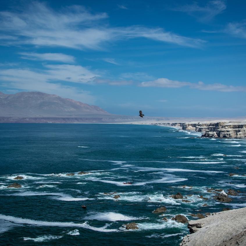 Chili, La Portada (3)