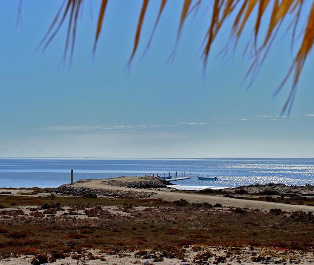 Mexico, Baja California Sur, Ojo de Liebre Lagoon (2)