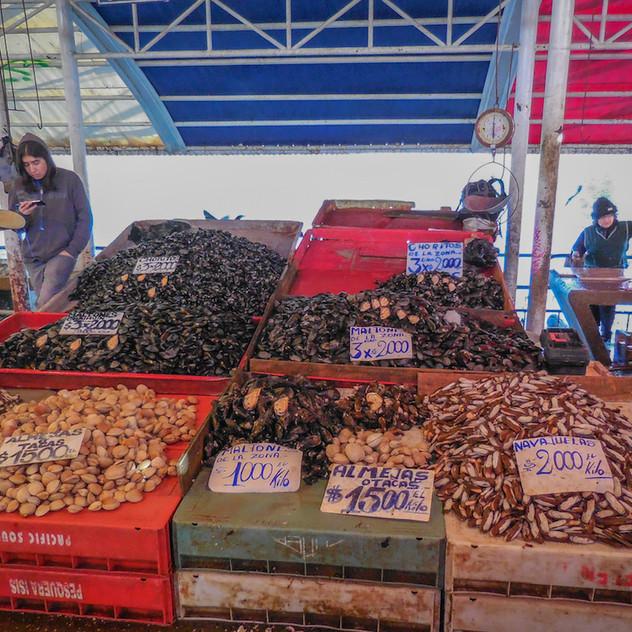 Chili, Valdivia; Mercado (1)
