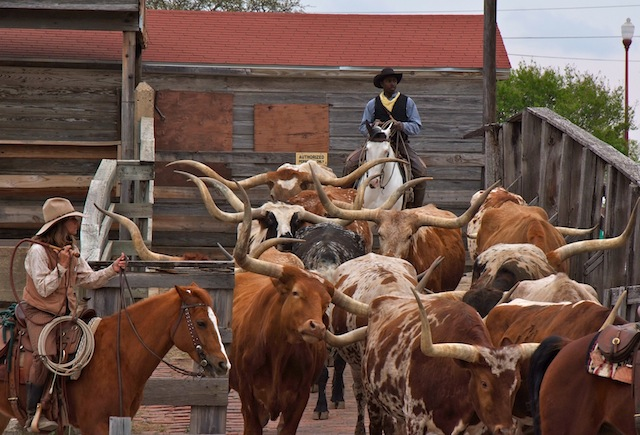 Fort Worth, Cattle Drive