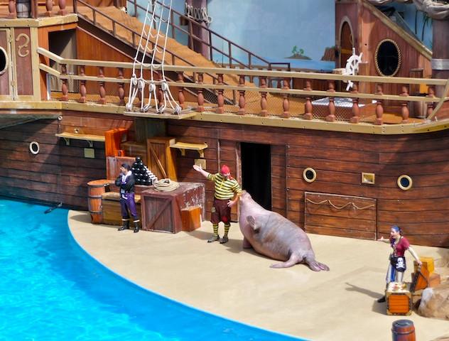 Seaworld, show Clyde & Seamore