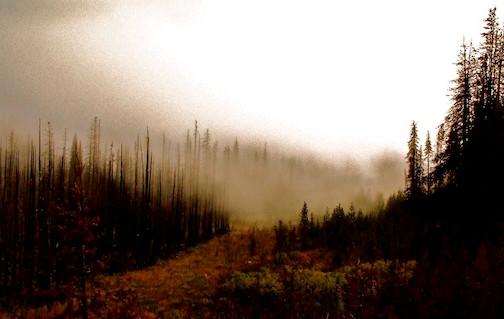 Canada BC, Heckman Pass