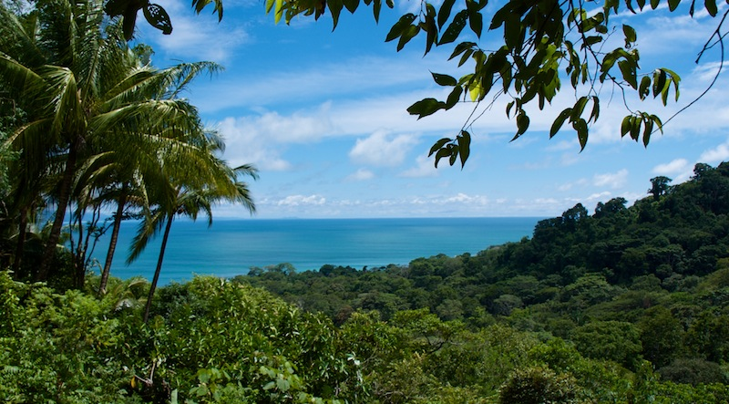 Costa Rica,Puerto Jimenez;on the road to Carate (7)