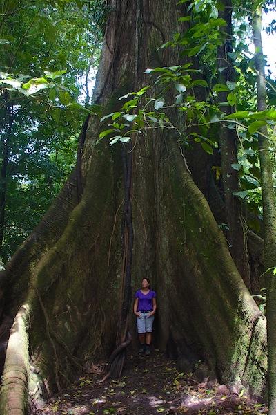 Costa Rica,Arenal Volcano National Park(4)