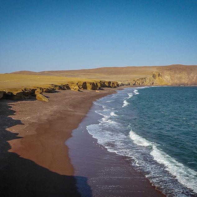 Peru, Reserva Nacional de Paracas (6)