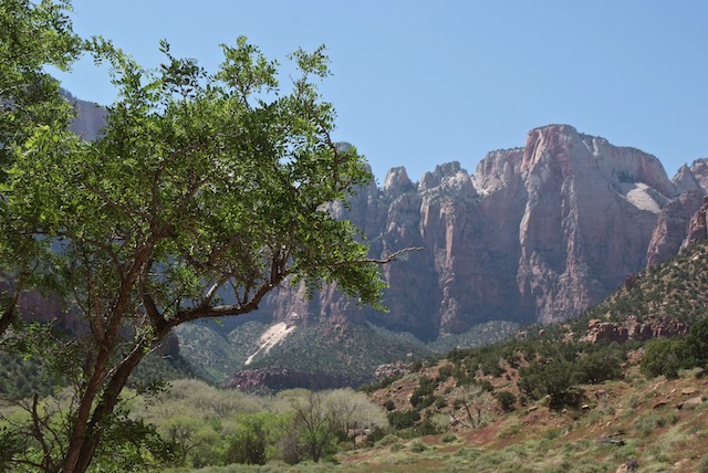 Zion The Towers of the Virgin