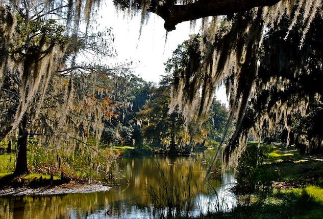 USA, Avery Island; Jungle Garden (1)JPG