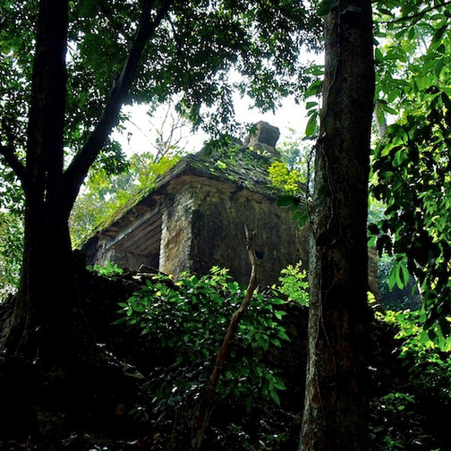 Mexico, Palenque (3)