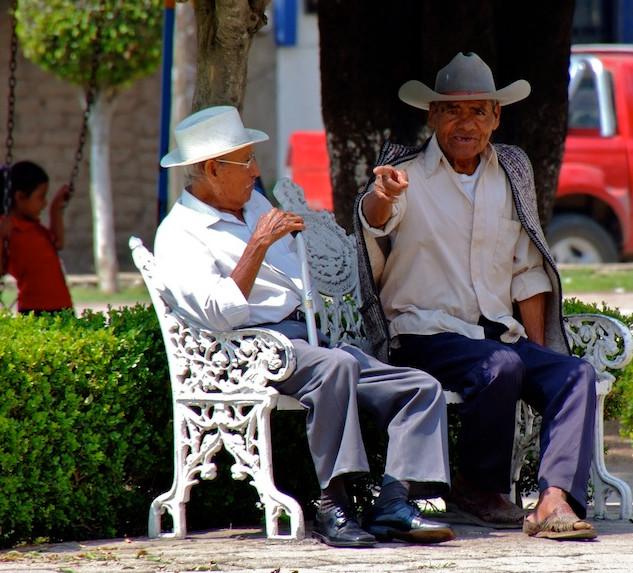 Mexico, El Tule (3)