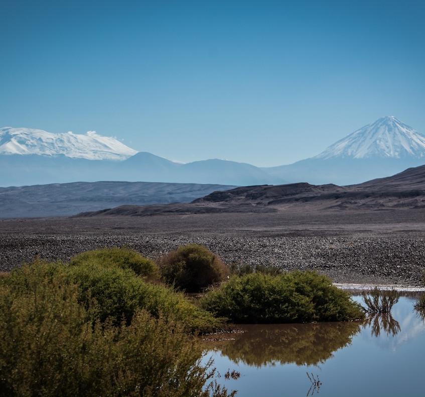 Chili, on the road from San Pedro de Atacama (1)