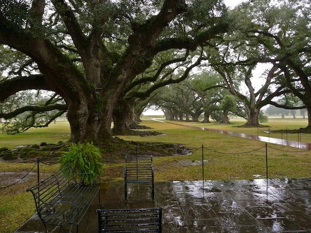 USA, Oak Alley Plantation (2)