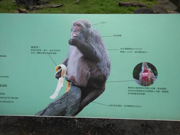 動物園-簡-04(1).jpg