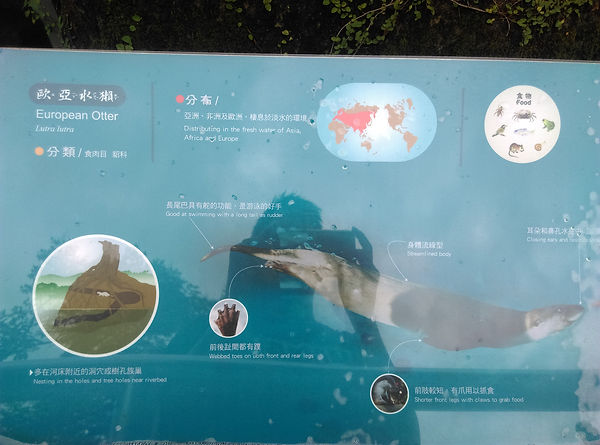 動物園-進-07.jpg