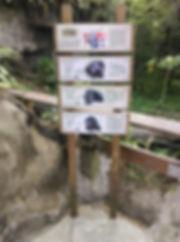 動物園-簡-05.jpg