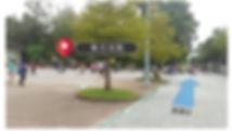 動物園-集合位置.jpg