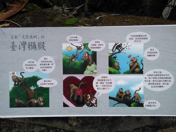 動物園-簡-04.jpg