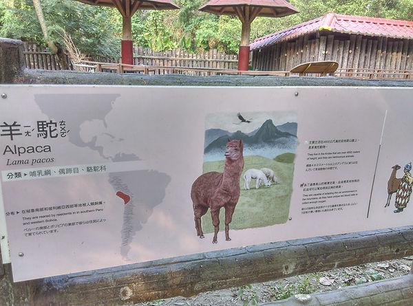 動物園-簡-03.jpg