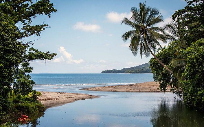Bougainville Seagate Banner.jpg