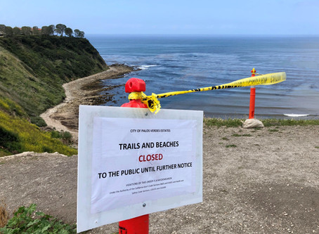 Lunada Bay Corona Closed, Now What?