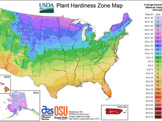 What is my Plant Hardiness Zone and why should I care?