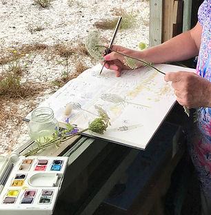 Nature journaling at Pūkorokoro Miranda Shorebird Centre