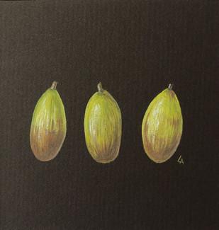 '3 Acorns'