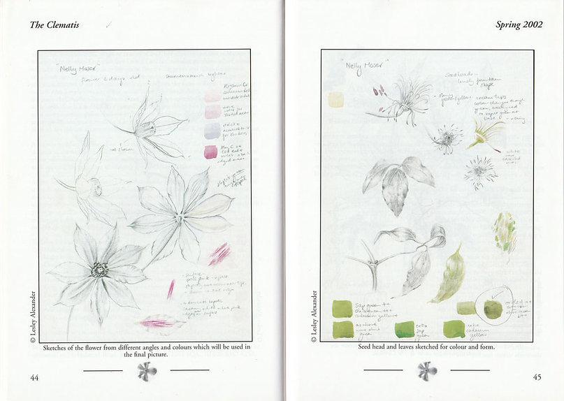 Clematis-journal-4.jpg