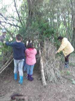 Construction de cabane