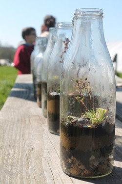 Jardins en bouteilles