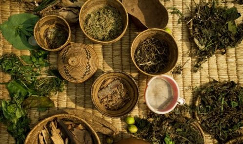 Traditional Healer in Honeydew
