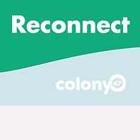 reconnect.jpg