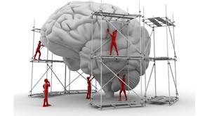 Falar modifica o cérebro