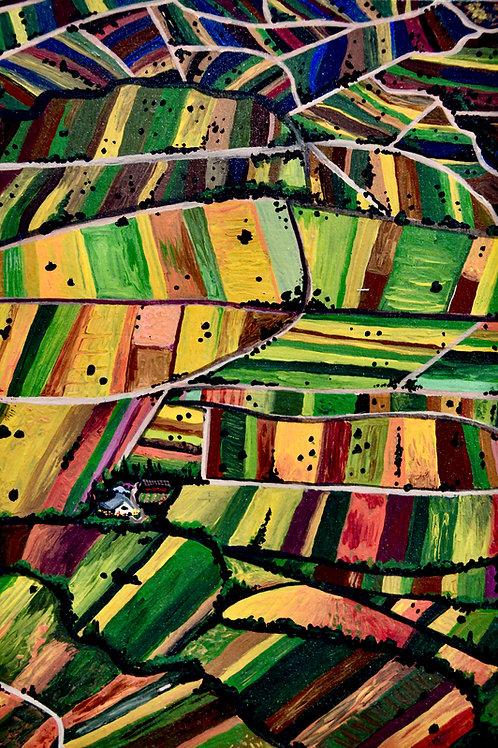 """WHEAT+ WEEDS"" 4x6 Art Print"