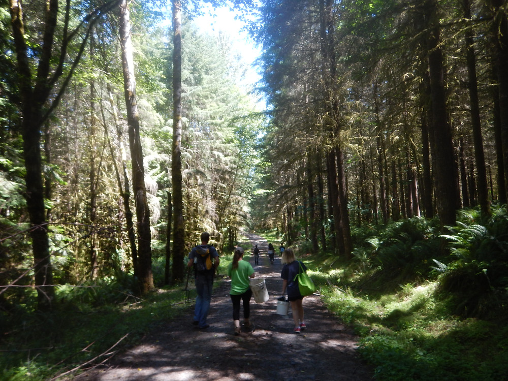 Figure 10: Most of the rockhounding group venturing to the dig site in Cowlitz County.