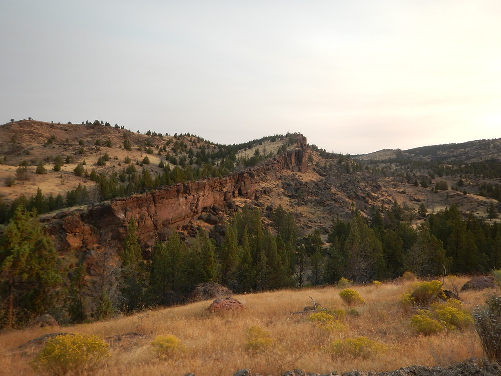 Figure 2: Roadside geology, indeed! Tumultuous ramparts of rock greet you at Richardson's Rock Ranch in Madras, OR.