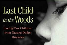 Figure 1: Cover of the book this post and essay were written on, Last Child in the Woods, by Richard Louv.