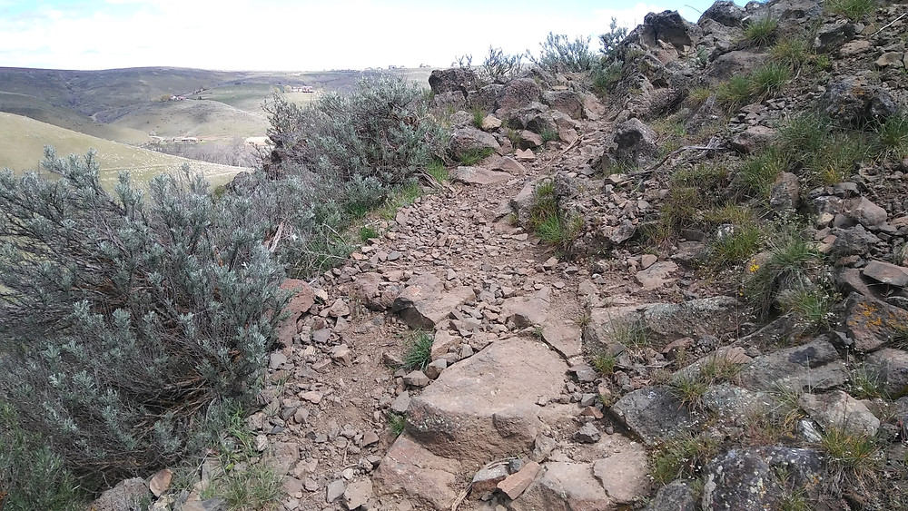 Figure 3: Trail leading up Yakima Canyon, littered with intermediate specks of mineral deposit.