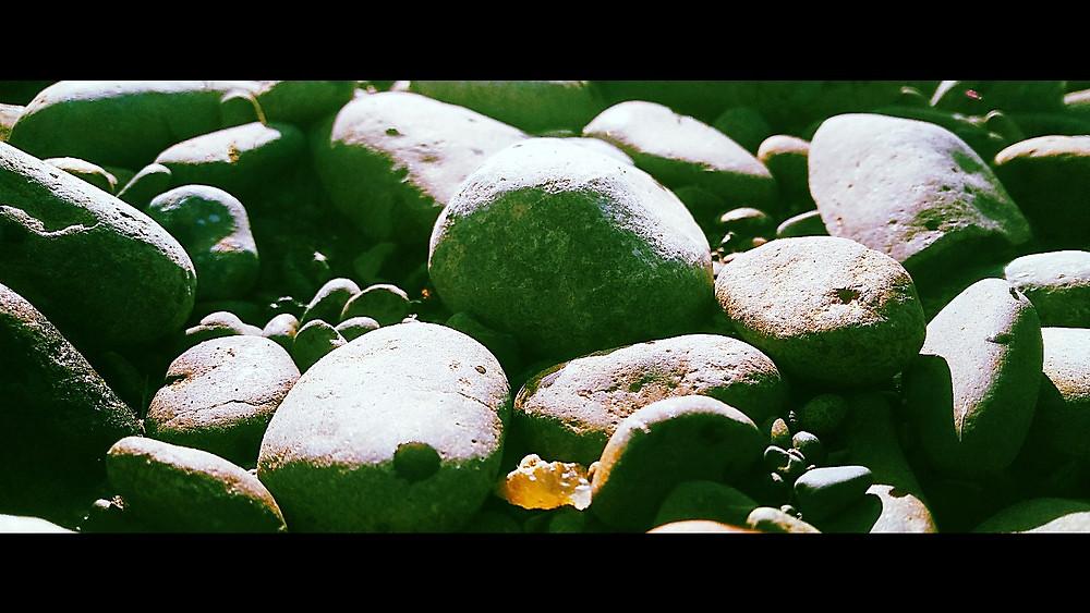 Figure 1: Agate hidden in gravel along the Chehalis River in southwestern Washington.