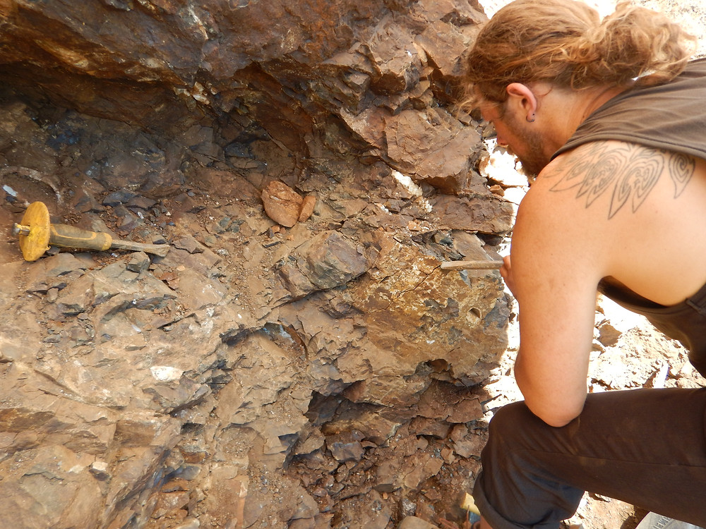 Figure 5: Theus inspecting the rock face for signs of geodes at First Creek.