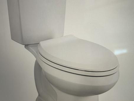 Dual Flush Toilets