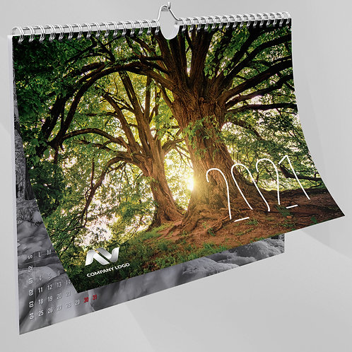 Calendar Peisaje - 95