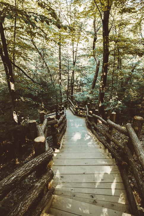 thewalkway.JPG