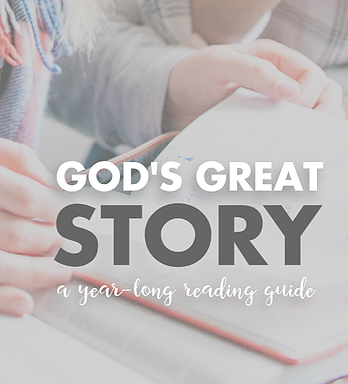 God's Great Story: A Year-Long Readin Guide