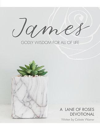 E-BOOK | James: Godly Wisdom for All of Life