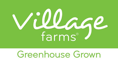 VF Logo Green.jpg