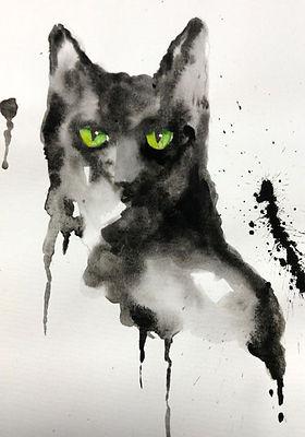 cat-box.jpg