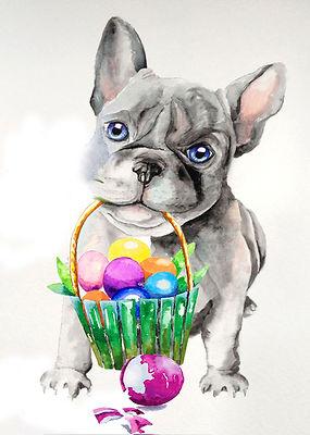 Easter French-bulldog medium.jpg
