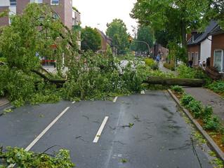 Risiko Natur - Unwetterschäden in Deutschland